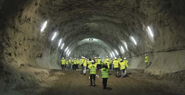 túnel el bicho